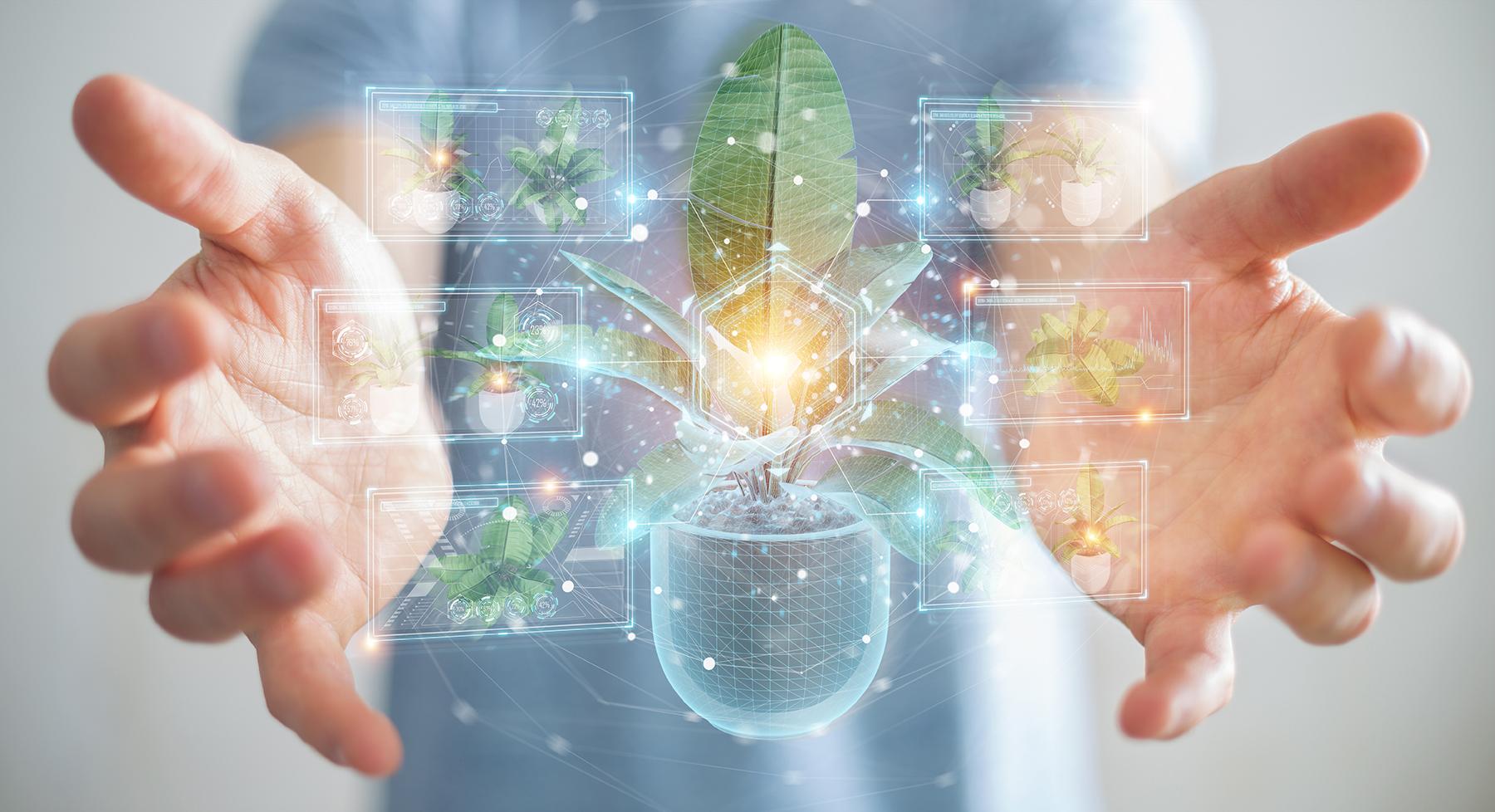 Eine ökologisch-soziale Marktwirtschaft