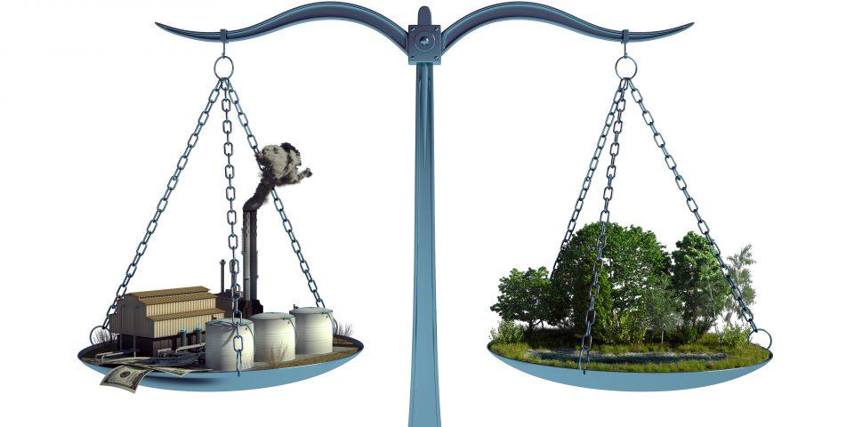 Umweltschutz und Kapitalismuskritik: ein unzulässiges Junktim?